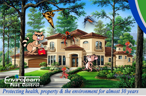 ProtectedHomebyEnviroTeamPestControl